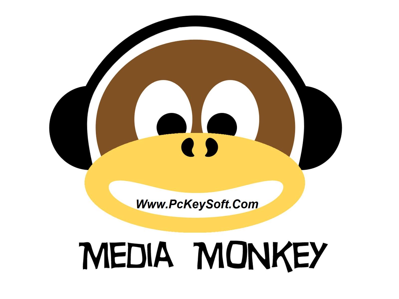 MediaMonkey Gold Crack 4.1.5 2017 Full Working Key Download